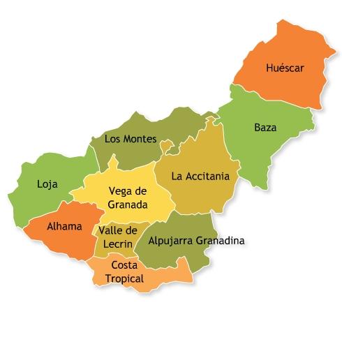 encontrar amigo golondrina en Granada